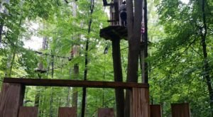 This Aerial Adventure Course In Ohio May Be The Most Fun You've Had In Ages