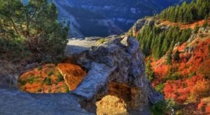 The Awesome Hike That Will Take You To The Most Spectacular Fall Foliage In Utah