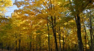 The Awesome Hike That Will Take You To The Most Spectacular Fall Foliage In Maine