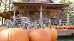 You Can't Ignore This Delightful Farm Market In Tennessee Any Longer