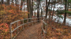 This Easy Fall Hike In Maine Is Under 2 Miles And You'll Love Every Step You Take