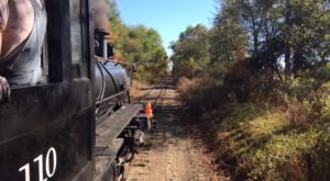 This 90-Minute Train Ride Is The Most Relaxing Way To Enjoy Michigan Scenery