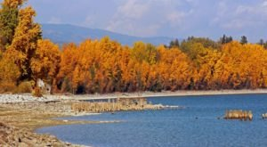 This Easy Fall Hike In Idaho Is Under 2 Miles And You'll Love Every Step You Take