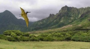 The Mystical Place In Hawaii Where Dinosaurs Once Roamed