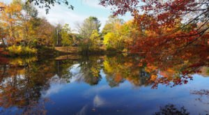 Fall Is Here And These Are The 8 Best Places To See The Changing Leaves In Rhode Island