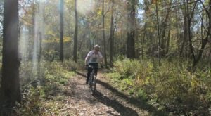 The Trails At This 1700-Acre State Park Near New Orleans Are Simply Breathtaking