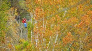 This Twilight Zip Line Is The Perfect Fall Adventure In Kentucky