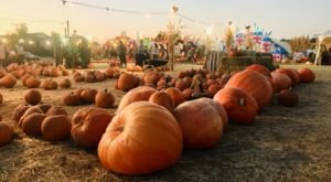 These Utah Pumpkin Houses Are Just Begging To Be Visited This Fall