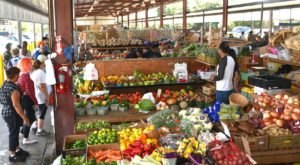 You Can't Ignore This Delightful Farm Market In Florida Any Longer