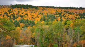 This 2-Hour Drive Through Massachusetts Is The Best Way To See This Year's Fall Colors