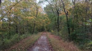 Spend A Crisp Fall Day Hiking This Heritage Trail Near Pittsburgh