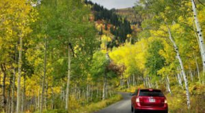This 2-Hour Drive Through Utah Is The Best Way To See This Year's Fall Colors