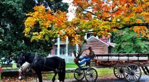 7 Amazing Museums In Nashville The Whole Family Will Love
