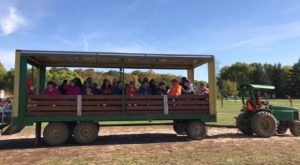 Enjoy These 10 Scenic Wagon Rides In Indiana Before The End Of Fall