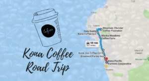 This Awesome Road Trip Will Take You To Hawaii's Most Unique Coffee Farms