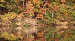 Spend A Fall Day On This Overlooked Tennessee Lake To Get Away From It All