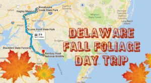 This 2-Hour Drive Through Delaware Is The Best Way To See This Year's Fall Colors