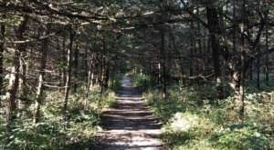 This Easy Fall Hike In Nebraska Is Under 2 Miles And You'll Love Every Step You Take