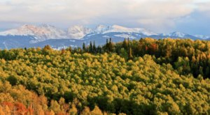 This 2-Hour Drive Through Colorado Is The Best Way To See This Year's Fall Colors