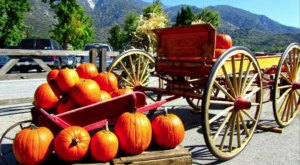 The Heavenly Day Trip In Southern California That You'll Want To Save For a Crisp Fall Day