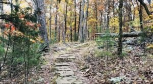 If You Only Hike Once This Fall Make Sure It's On This Arkansas Trail