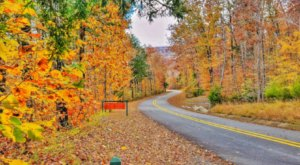 See This Year's Fall Colors On The Boston Mountains Scenic Loop, A 2-Hour Drive Through Arkansas
