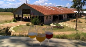 Texas' Largest Farm Brewery, Jester King, Is A Must-Visit