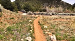 This Easy Fall Hike In New Mexico Is Under 2 Miles And You'll Love Every Step You Take