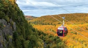 This Breathtaking Gondola Ride In Minnesota Will Show You The Fall Colors Like Never Before
