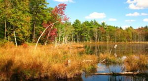 This 4-Mile Hike In Rhode Island Will Surround You With The Most Vibrant Autumn Colors