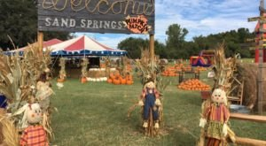 Make Your Autumn Awesome With A Visit To Oklahoma's Little Known Pumpkin Park