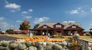 This 6,000-Acre Pumpkin Farm In Alabama Is The Classic Fall Experience You Need