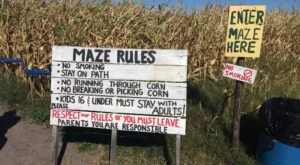 The Awesome Florida Corn Maze That Only Gets Better Year After Year