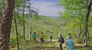 Hike These 8 Scenic Trails In Alabama To Experience The Most Spectacular Views