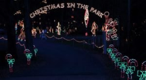 Take A Dreamy Ride Through The Largest Drive-Thru Light Show In Mississippi, Tylertown's Christmas In The Park