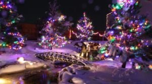 The Mesmerizing Christmas Display In Wyoming With Over 200,000 Glittering Lights