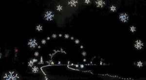 Take A Dreamy Ride Through The Largest Drive-Thru Light Show In Virginia, Bull Run Festival Of Lights