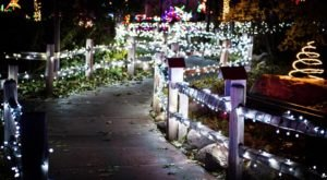You Will Love This Dreamy Stroll Through The Largest Walk-Through Light Show In New Mexico