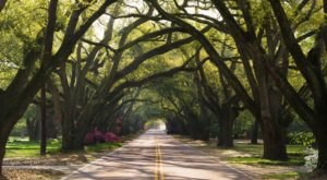 Skip Charleston And Head Straight To This Nearby Town For A Beautiful Day Trip