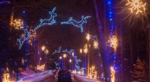 Take A Dreamy Ride Through The Largest Drive-Thru Light Show In Massachusetts, Bright Nights At Forest Park