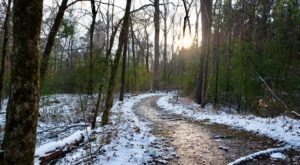These 7 Nature Trails In Louisiana Are Perfect For A Short Winter Hike