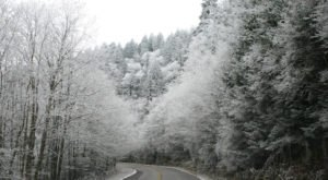 The One Tennessee State Park That Will Transform Into A Winter Wonderland This Year