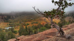 This Easy Fall Hike In Wyoming Is Under A Mile And You'll Love Every Step You Take