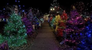 The Christmas Tree Trail At Gallipolis In Lights In Ohio Is Like Walking In A Winter Wonderland