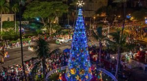 The Christmas Lights Show In Hawaii That Becomes Even More Enchanting Year After Year
