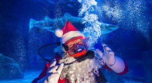 You Can Visit An Underwater Santa At This One-Of-A-Kind Kentucky Attraction