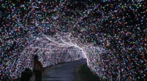 You Will Love This Dreamy Ride Through The Largest Drive-Thru Light Show In New Hampshire