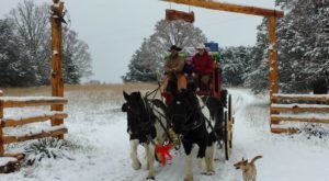 The Sleigh Ride In Missouri That's A Picture-Perfect Winter Adventure