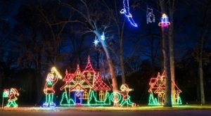 Take A Dreamy Ride Through The Largest Drive-Thru Light Show In Illinois, The Festival of Lights
