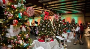 Nothing Will Get You Ready For The Holidays Like This Massive Christmas Tree Auction In Illinois